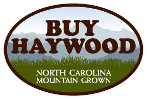 Buy Haywood Logo